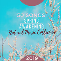 50 Songs for Spring Awakening - 2019 Natural Music Collection — Meditation Relax Club