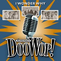 I Wonder Why (Remember Doo Wop) — сборник