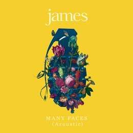 Many Faces — JAMES
