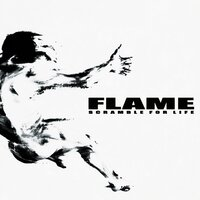 Scramble for Life — Flame