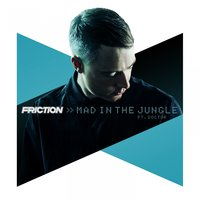 Mad in the Jungle — Friction, Doctor