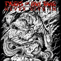Never Give In — Tygers Of Pan Tang