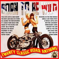 Born To Be Wild - Twenty Classic Road Anthems — The Dillingers