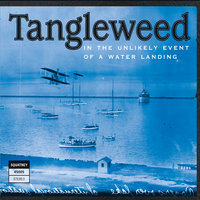 In the Unlikely Event of a Water Landing — Tangleweed