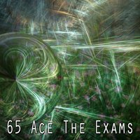 65 Ace The Exams — Music For Reading