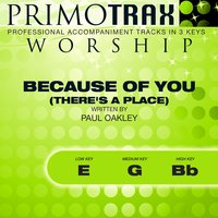 Because of You - There's a Place (Worship Primotrax) - EP — Simon Goodall, Primotrax Worship