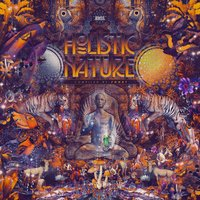 Holistic Nature (Compiled by Fohat) — Duke, Gonzo, Moonquake, E-Motion, Wavelength, Moon Tripper