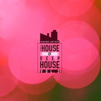 The House Of Deep-House, Vol. 2 — сборник