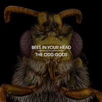 Bees in Your Head — The Odd Gods