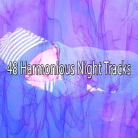 48 Harmonious Night Tracks — Sleep Sounds Of Nature