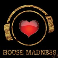 House Madness, Vol. 7 — сборник