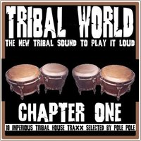 Tribal World Chapter One — сборник