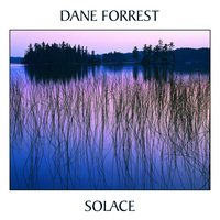 Solace — Dane Forrest