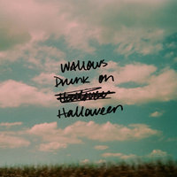 Drunk on Halloween — Wallows