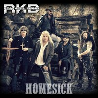 Homesick — Ron Keel Band
