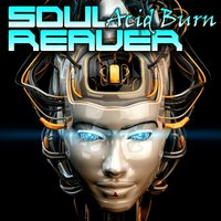 Acid Burn — SoulReaver