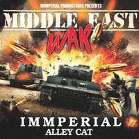 Middle East War — Immperial Alley Cat