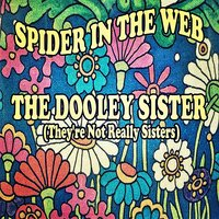 Spider in the web — The Dooley Sisters (They're Not Really Sisters)
