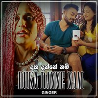 Duka Danne Nam - Single — Ginger