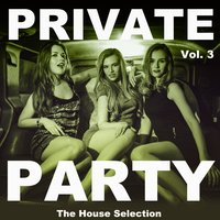 Private Party, Vol. 3 — сборник