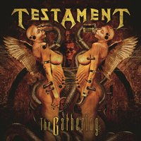 The Gathering — Testament