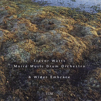 A Wider Embrace — Trevor Watts, Moiré Music Drum Orchestra
