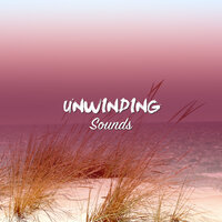 #20 Unwinding Sounds for Massage & Pilates — Massage Music, Pilates Workout, Zen Meditation and Natural White Noise and New Age Deep Massage, Massage Music, Zen Meditation and Natural White Noise and New Age Deep Massage, Pilates Workout