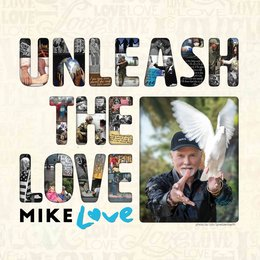 Unleash The Love — Mike Love