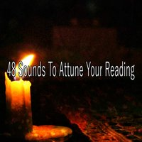 48 Sounds To Attune Your Reading — White Noise Meditation