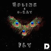 Fly — Uplink & O-Kay feat. Philip Strand