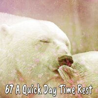 67 A Quick Day Time Rest — Sleep Sounds Of Nature