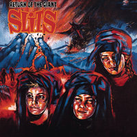 Return of the Giant Slits — The Slits