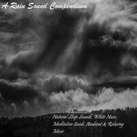 A Rain Sound Compendium - Natural Sleep Sounds, White Noise, Meditation Guide, Ambient & Relaxing Music — Ambient Music Therapy, Sleep Sounds of Nature, The Rain Library, The Rain Library,Ambient Music Therapy,Sleep Sounds of Nature
