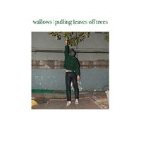 Pulling Leaves off Trees — Wallows