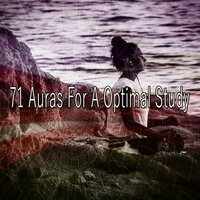 71 Auras for a Optimal Study — Pro Sounds Effects Library