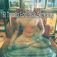 61 Tracks for Peak Serenity — White Noise Research