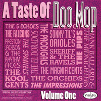 A Taste Of Doo Wop, Vol. 1 — сборник