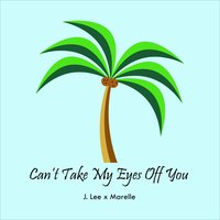 Can't Take My Eyes Off You — J. Lee
