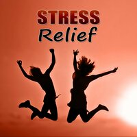Stress Relief – Calm Spa Sounds, Wellness Music Spa, Pure Mind and Body with Healing Massage Music — Anti Stress Music Zone