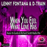 When You Feel What Love Has — Lenny Fontana, D Train, D-Train