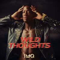 Wild Thoughts — Imq