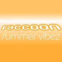 Summer Vibez — Raccoon
