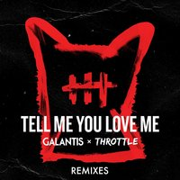 Tell Me You Love Me — Galantis, Throttle
