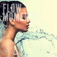 Flow Moments, Vol. 1 — сборник