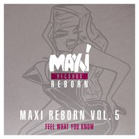 Maxi Reborn Vol. 5: Feel What You Know — Big Muff