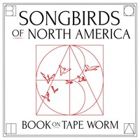 Songbirds of North America — Book on Tape Worm