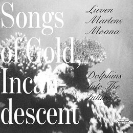 Songs Of Gold, Incandescent — Dolphins Into The Future, Lieven Martens Moana