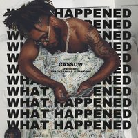 What Happened — Cassow