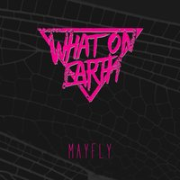 Mayfly — What on Earth