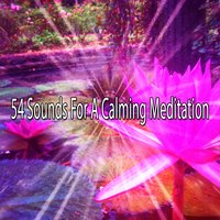54 Sounds For A Calming Meditation — Entspannungsmusik